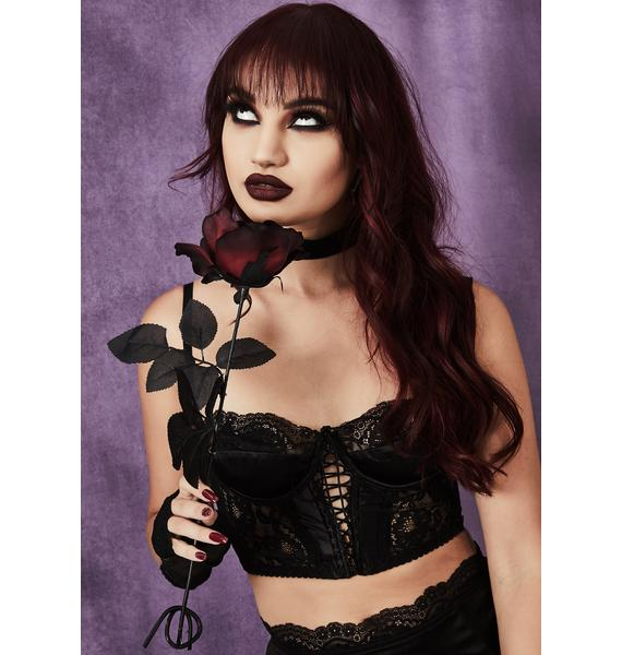 Widow Moral Dilemma Lace Bustier Set