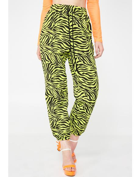 Radioactive Jungle Zebra Pants