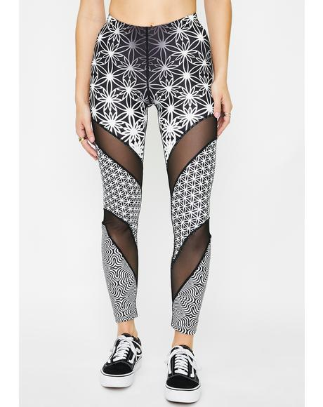 Flowers Of Love Printed Leggings