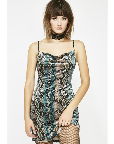 Poison Affair Snakeprint Dress