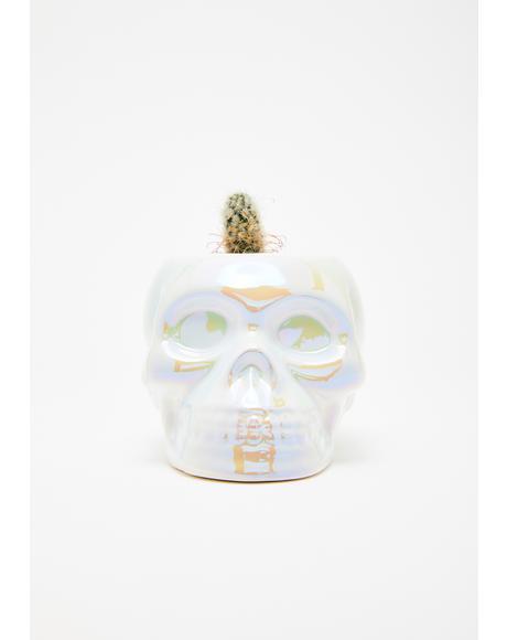 Aura Skull Planter