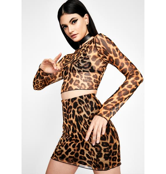 Currently Catty Sheer Set