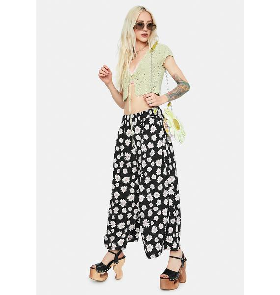 Night Dancing with Daisy Print Elastic Waist Pants