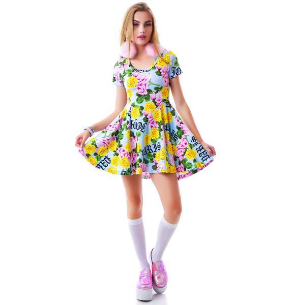Joyrich Memorial Garden Skater Dress