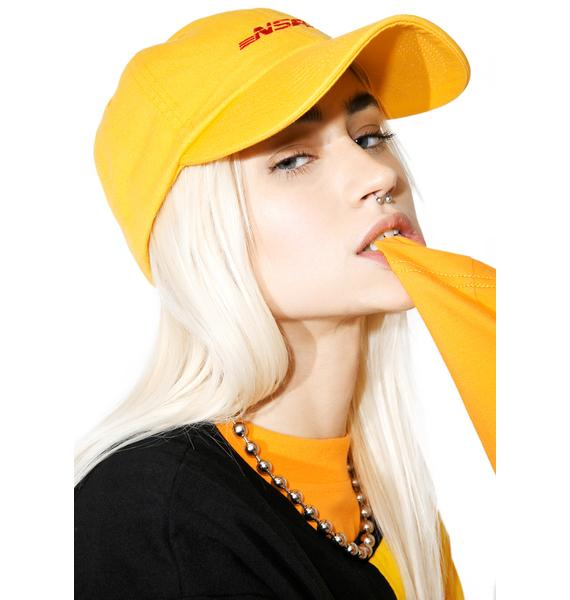 Flamingo Squadron NSFW Dad Hat