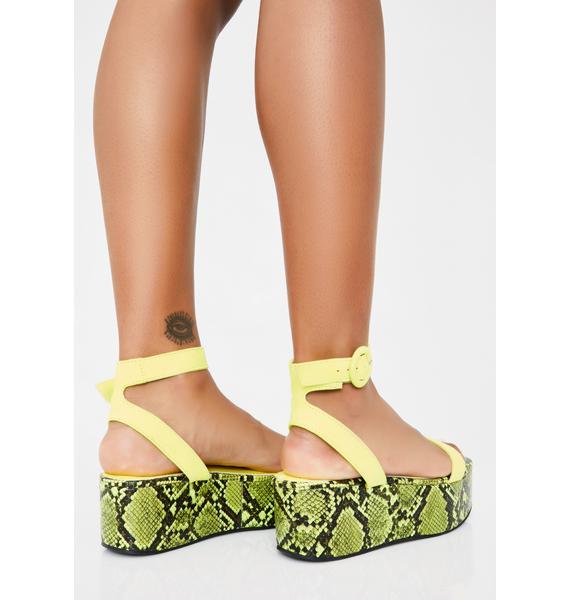 Animal Control Platform Sandals