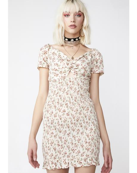 Honey Garden Floral Dress