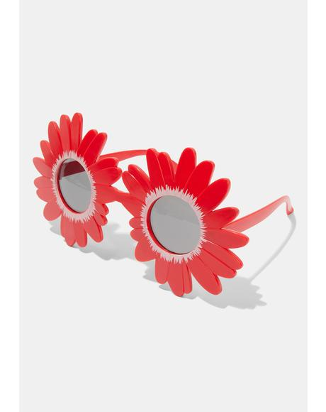 Late Bloomer Sunflower Sunglasses