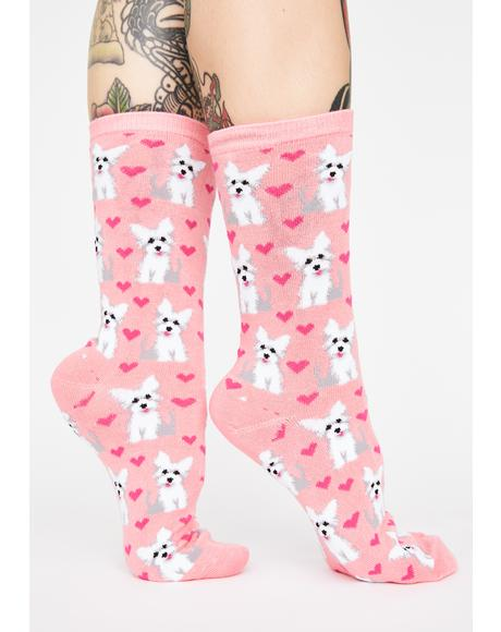 Puppy Love Graphic Crew Socks
