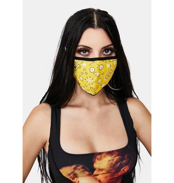Sunny Hoedown Throwdown Bandana Face Mask