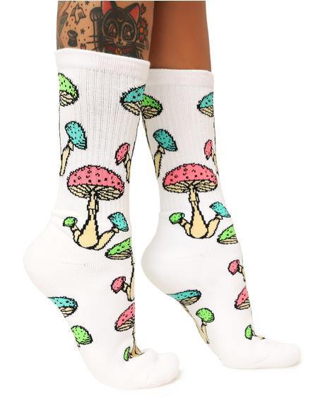 Trippy Socks