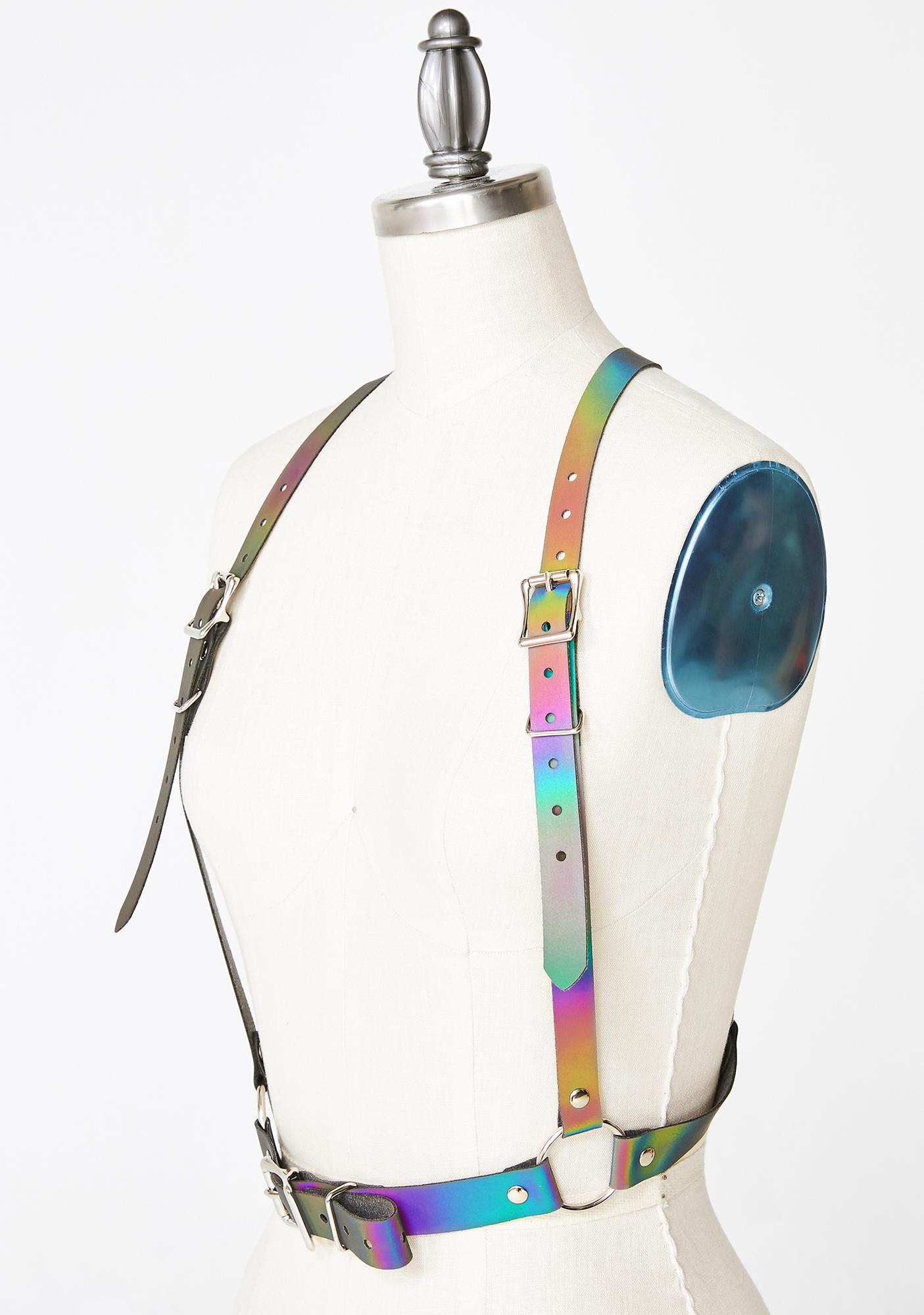 Apatico Reflective Rainbow Harness