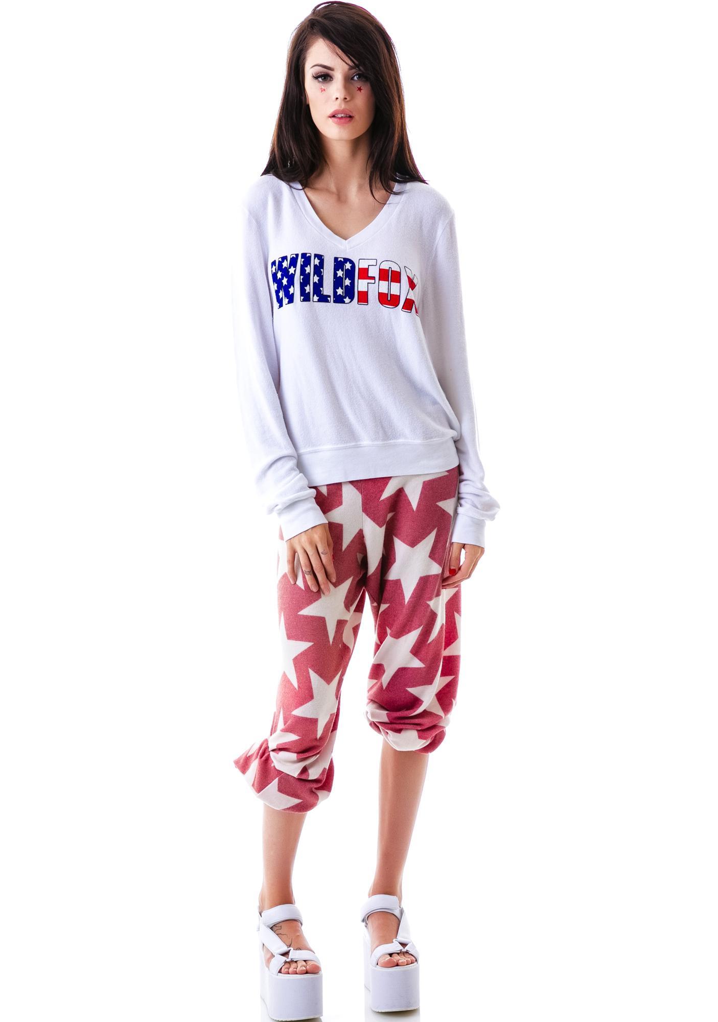 Wildfox Couture American Fox V-Neck Baggy Beach Jumper