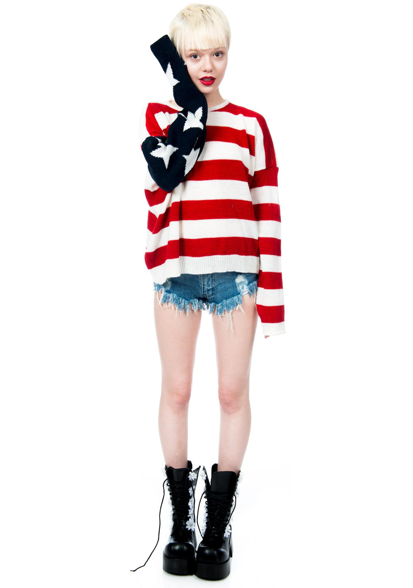 Lizabeth Flag Sweater