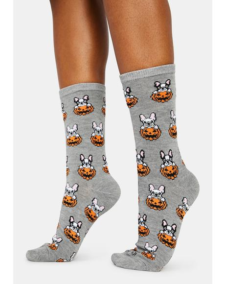 Pumpkin Puppy Crew Socks