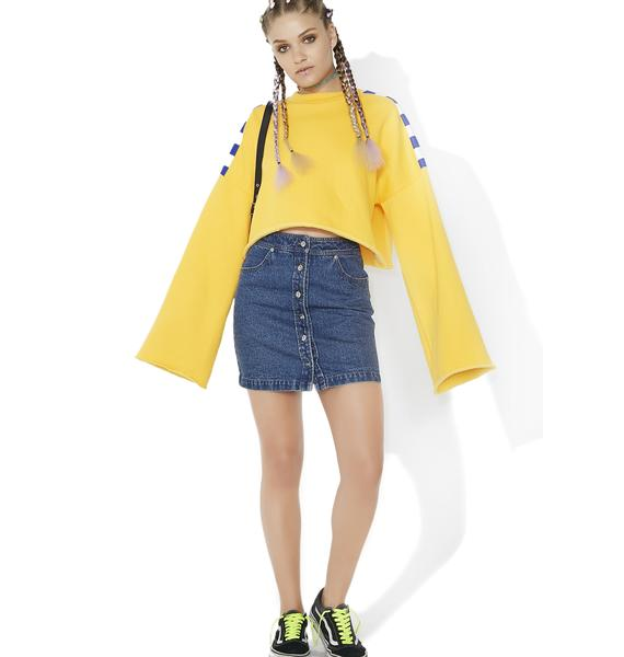 Chick Habit Denim Skirt