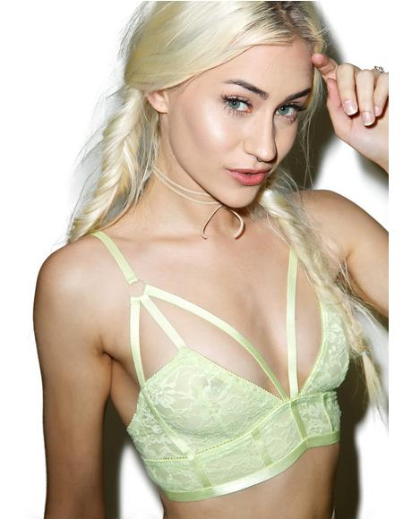 Electric Hollaback Bralette