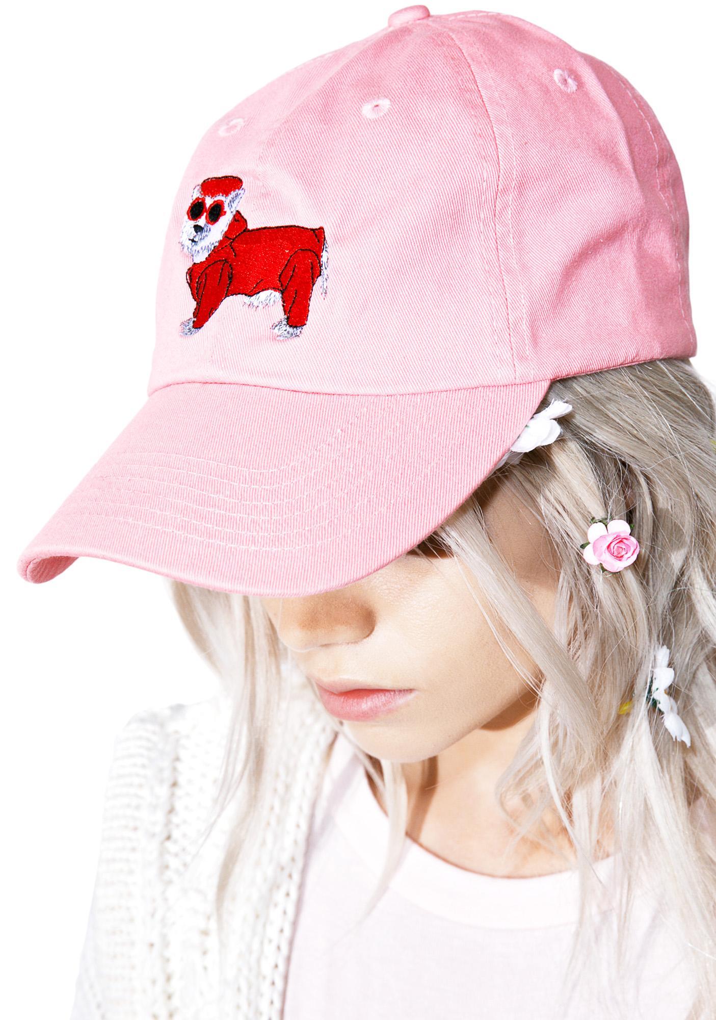 Cool Dog Dad Hat