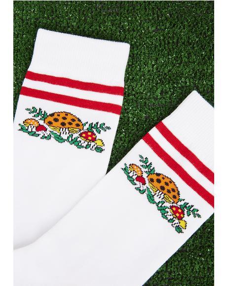 Shroomin' Socks