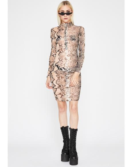 Cold Hearted Snake Mesh Dress