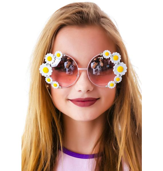 Drivin' Mizz Daizy Sunglasses