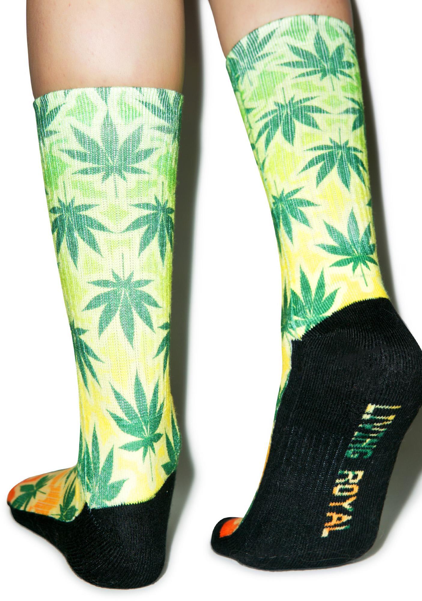 Blaze Up Socks