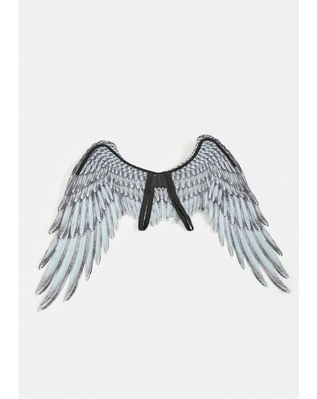 Night Soar Above Angel Wings