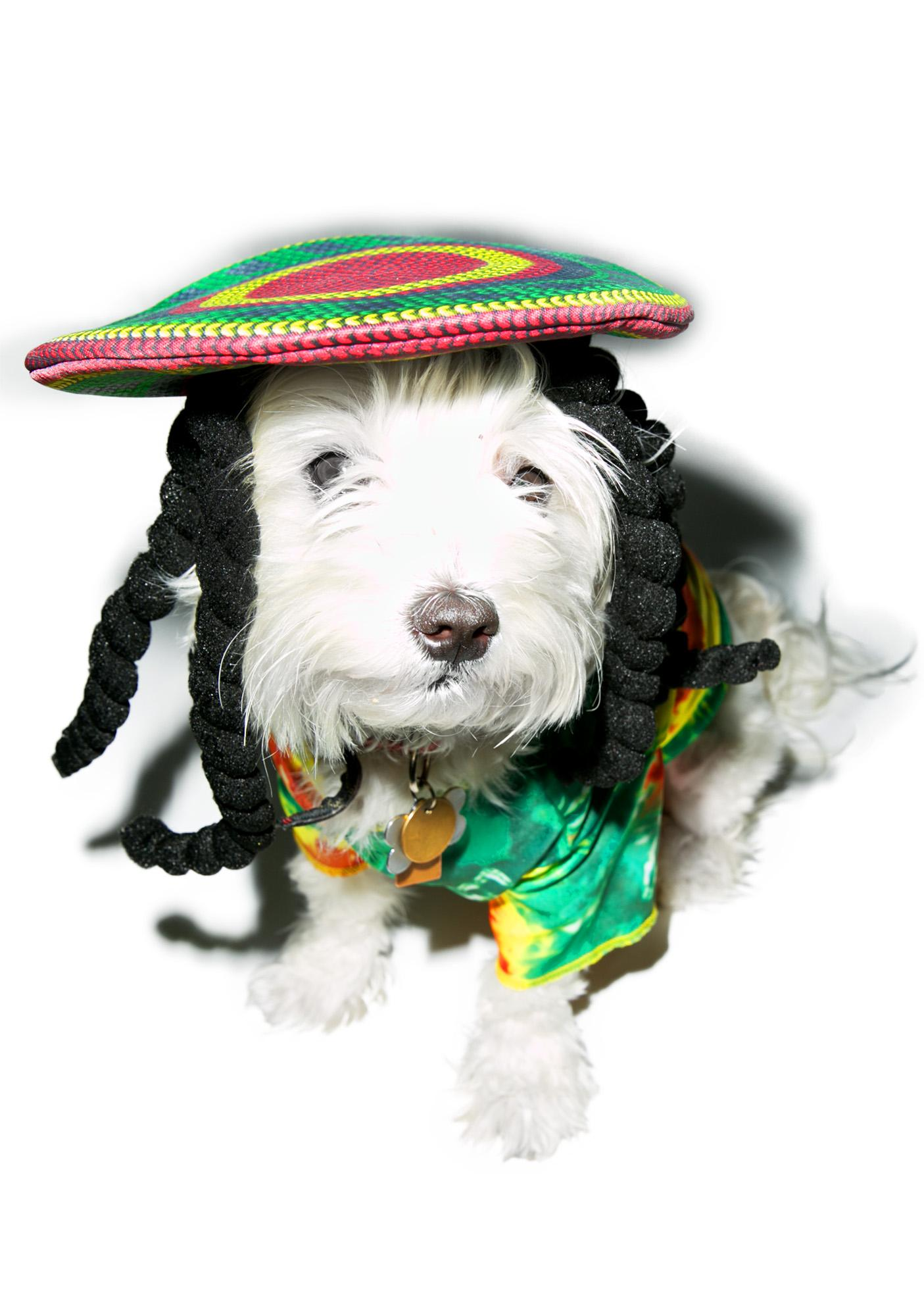 Marley N' Me Dog Costume