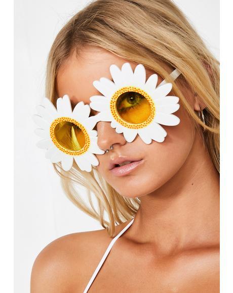 Delicate Sunshine Daisy Sunglasses