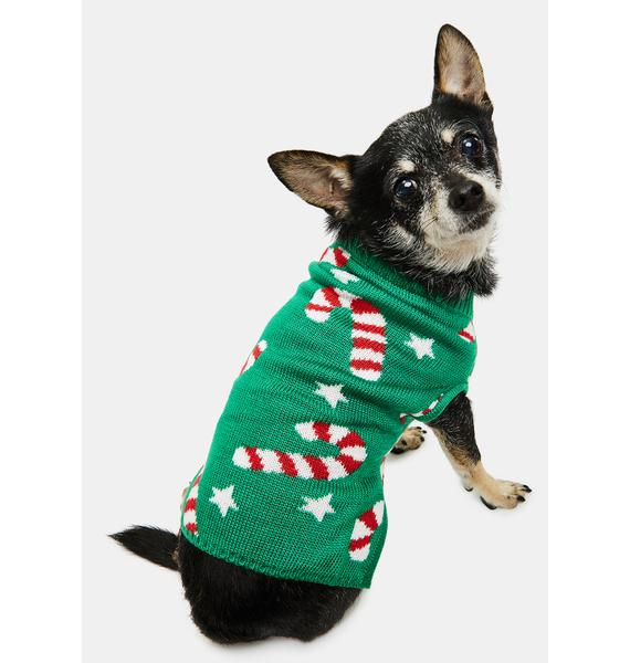 Tipsy Elves Candy Cane Dog Sweater