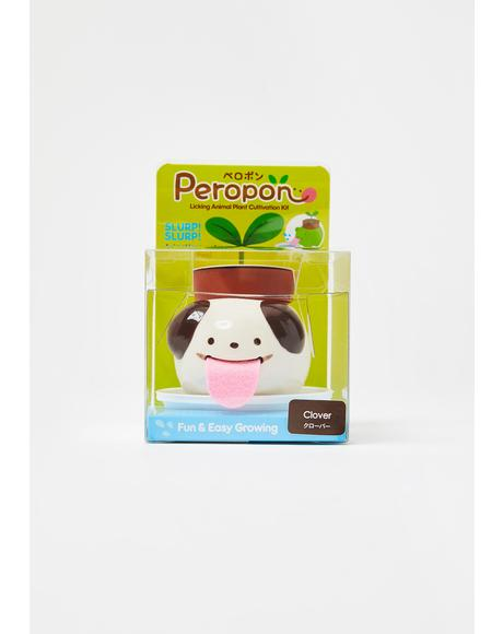 Dog Peropon Mini Plant
