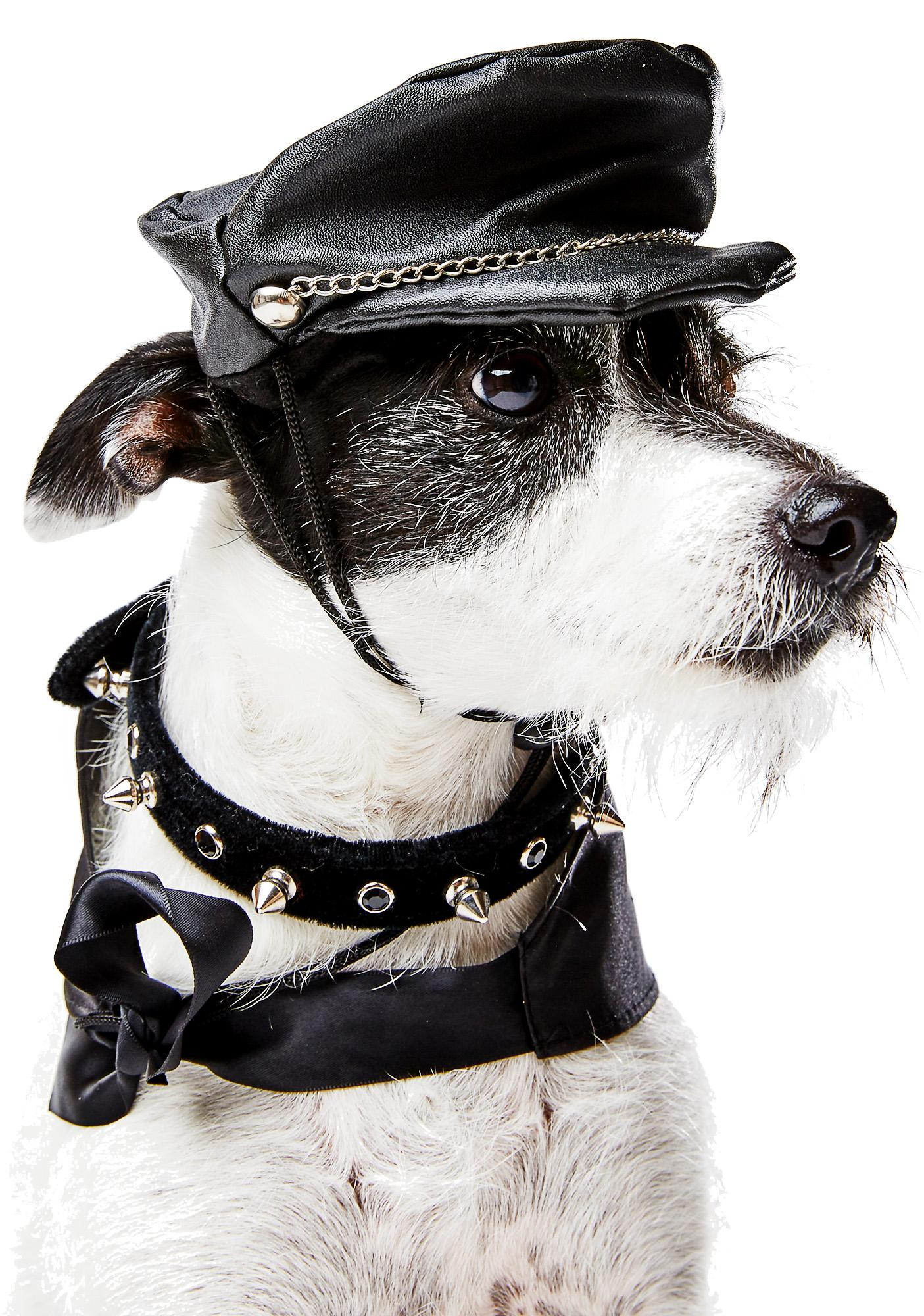 Doggie Biker Boy Hat