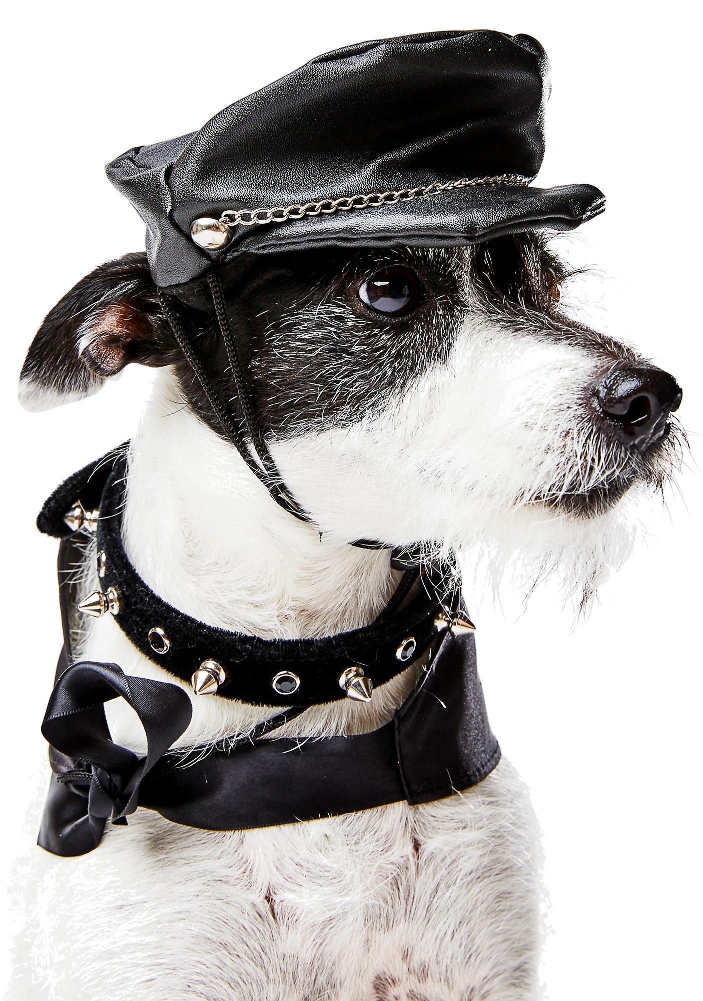 Doggie Biker Boy Hat
