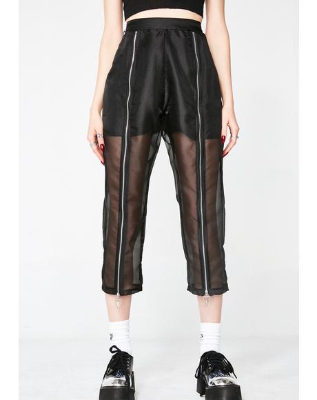 Magnetic Pants