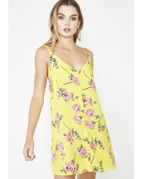 Olsa Dress