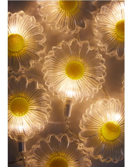 Mad For Daisies String Lights