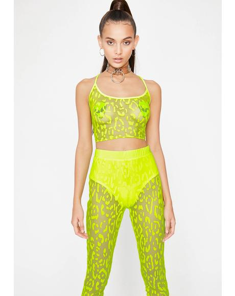 Toxic Animal Instinct Pant Set