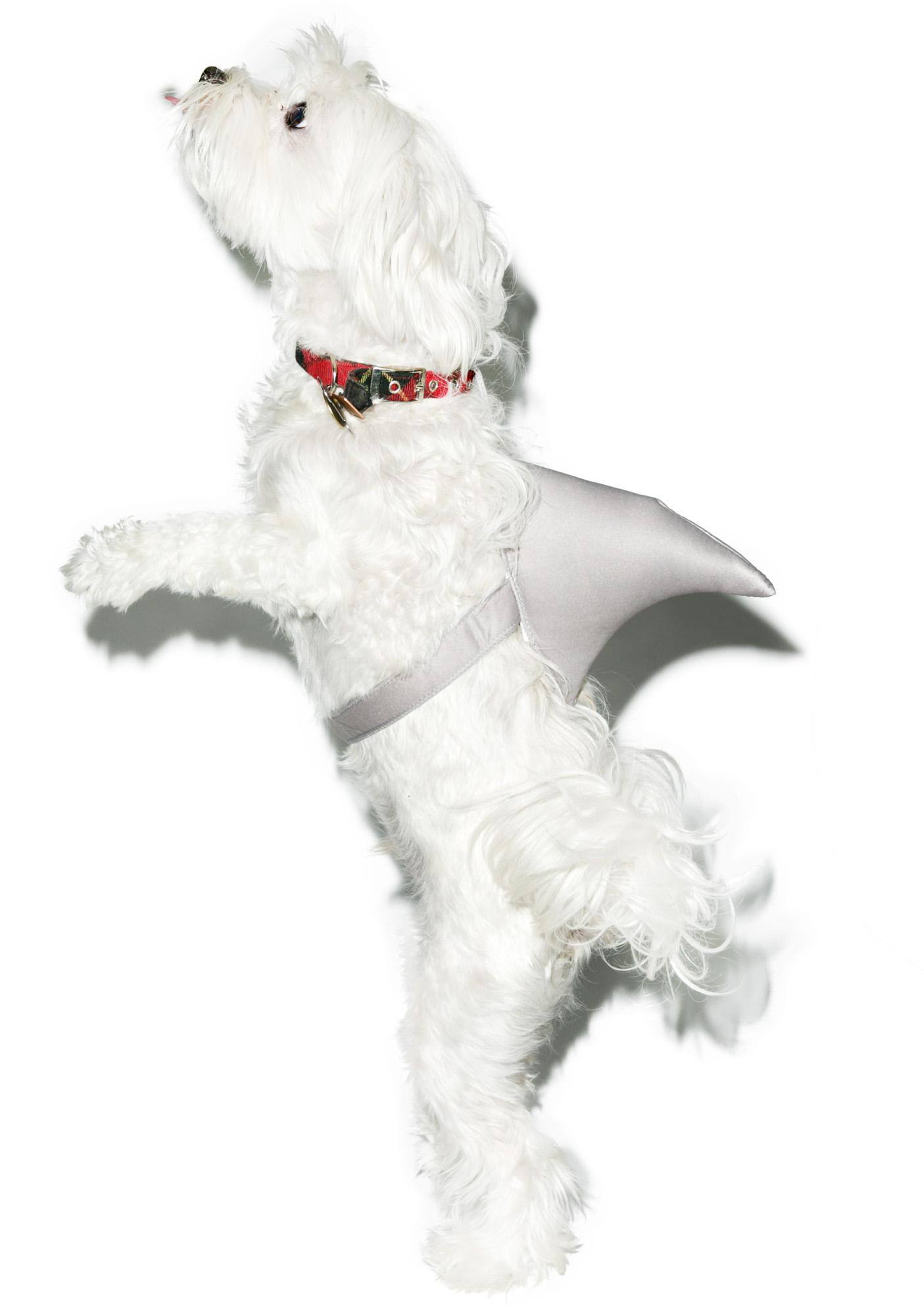 I Luv Shark Week Dog Costume