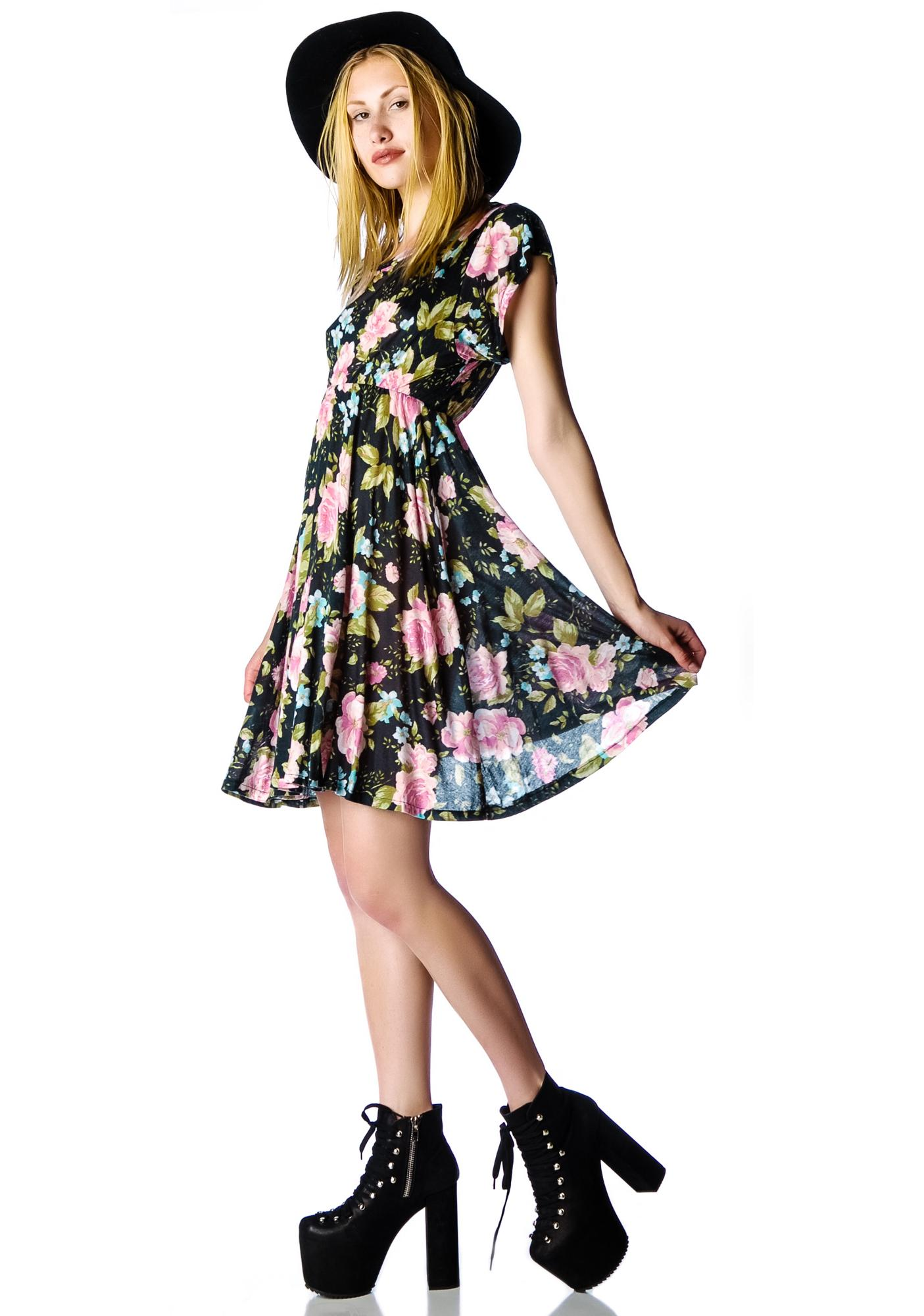 Wildfox Couture Grunge Rose Valley of the Doll Dress