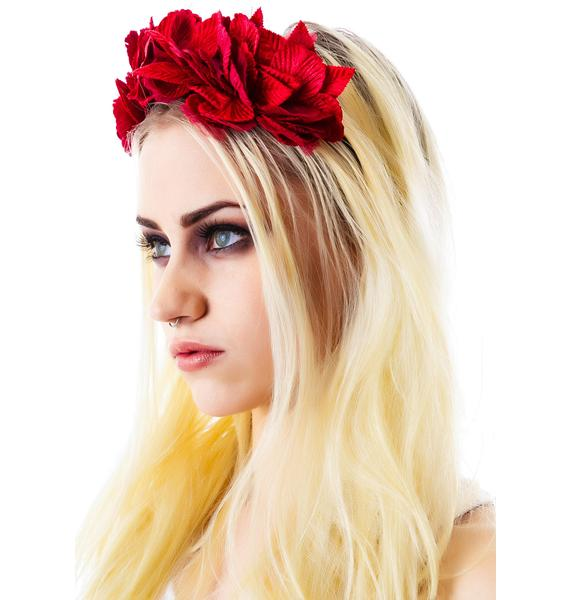 Cult Gaia Serena Velvet Noir Crown