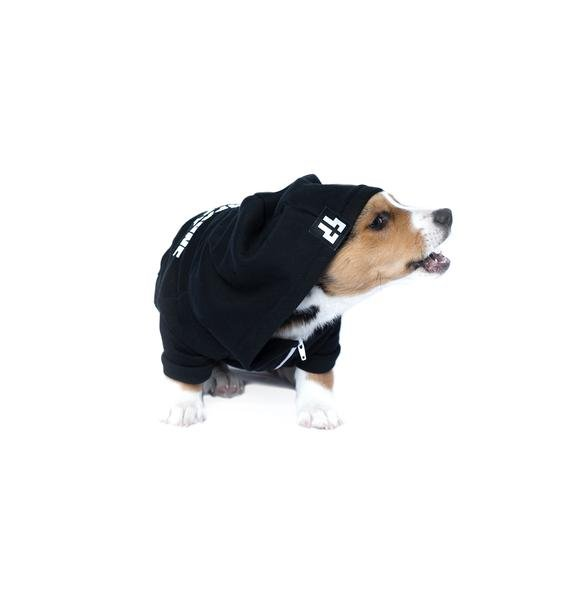 Petals and Peacocks Champagne Puppy Dog Hoodie