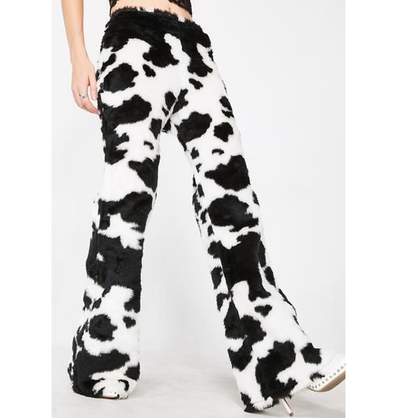 Tiar Shaggy Cow Flares