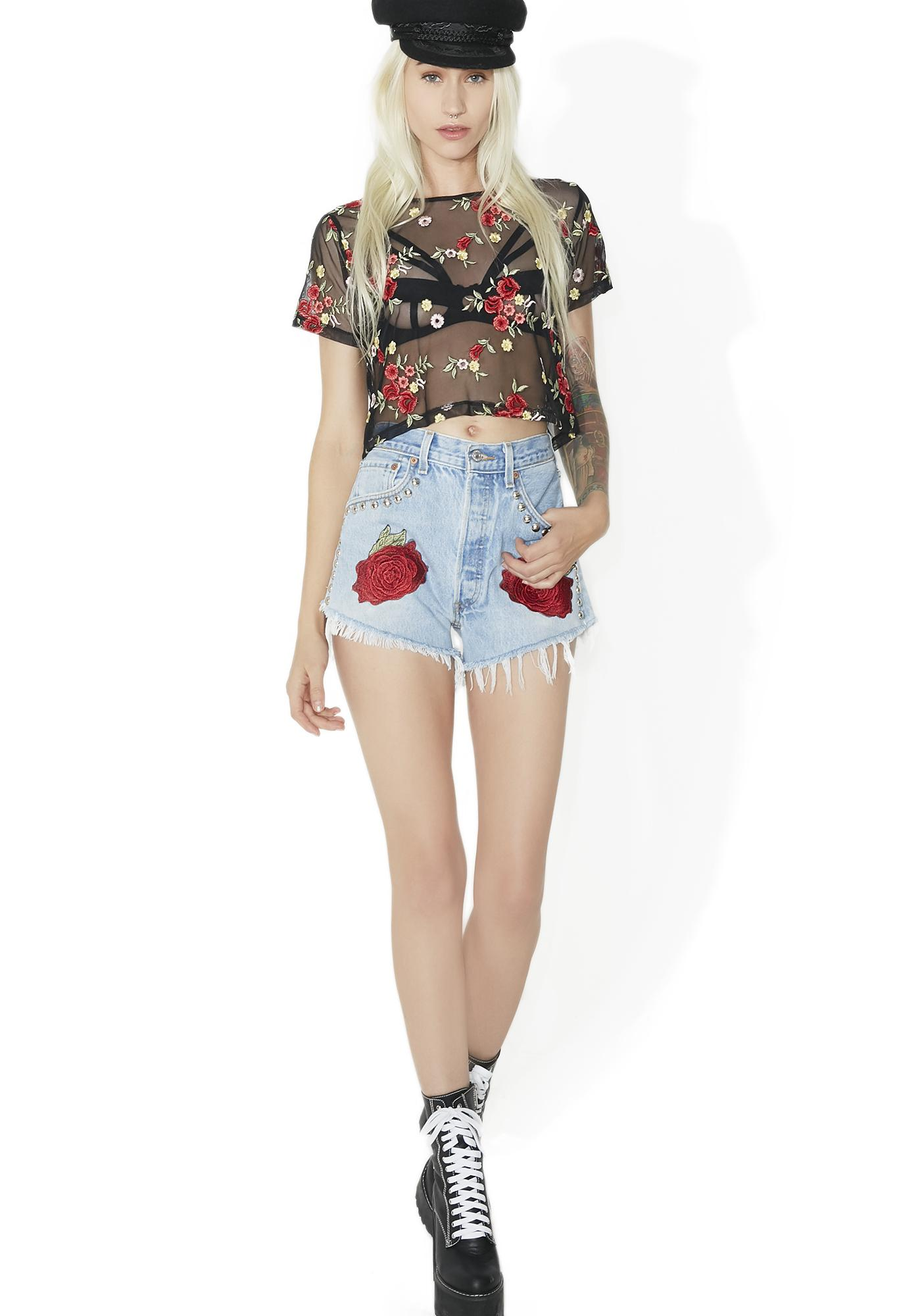 Secret Garden Rose Mesh Top