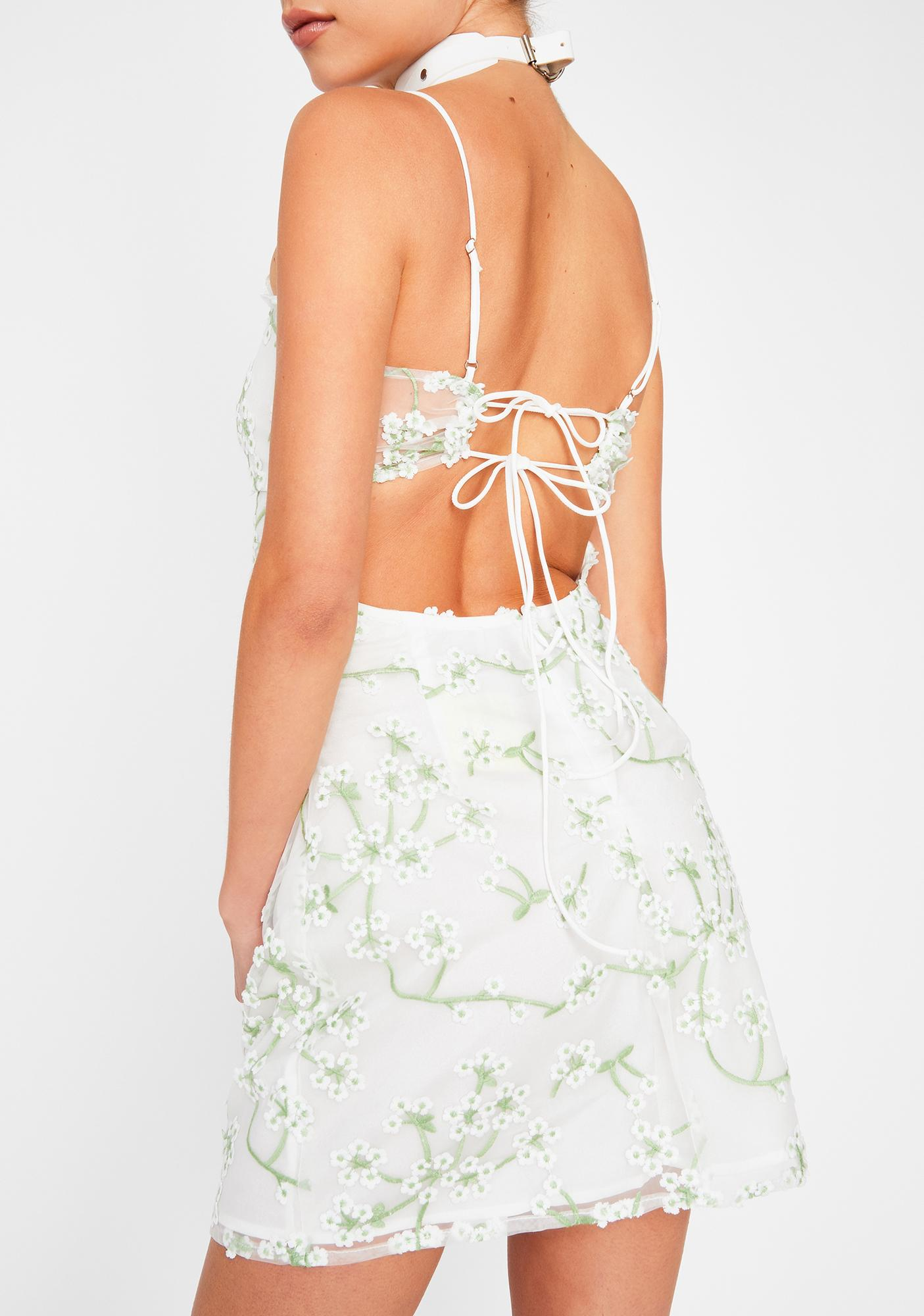 Fairy Bloom Embroidered Dress