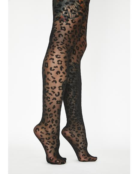 Leopard Print Sheer Tights