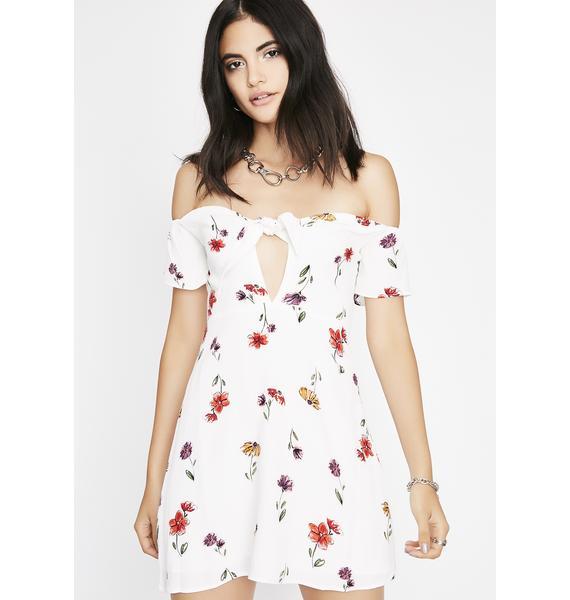 The Good Good Mini Dress