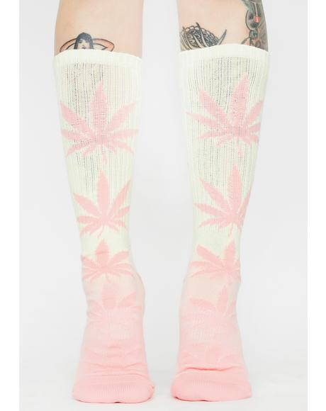 Plantlife Gradient Crew Socks