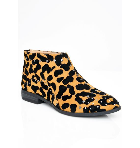 Catty Behavior Ankle Boots
