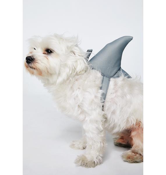 Bark-nado Dog Costume