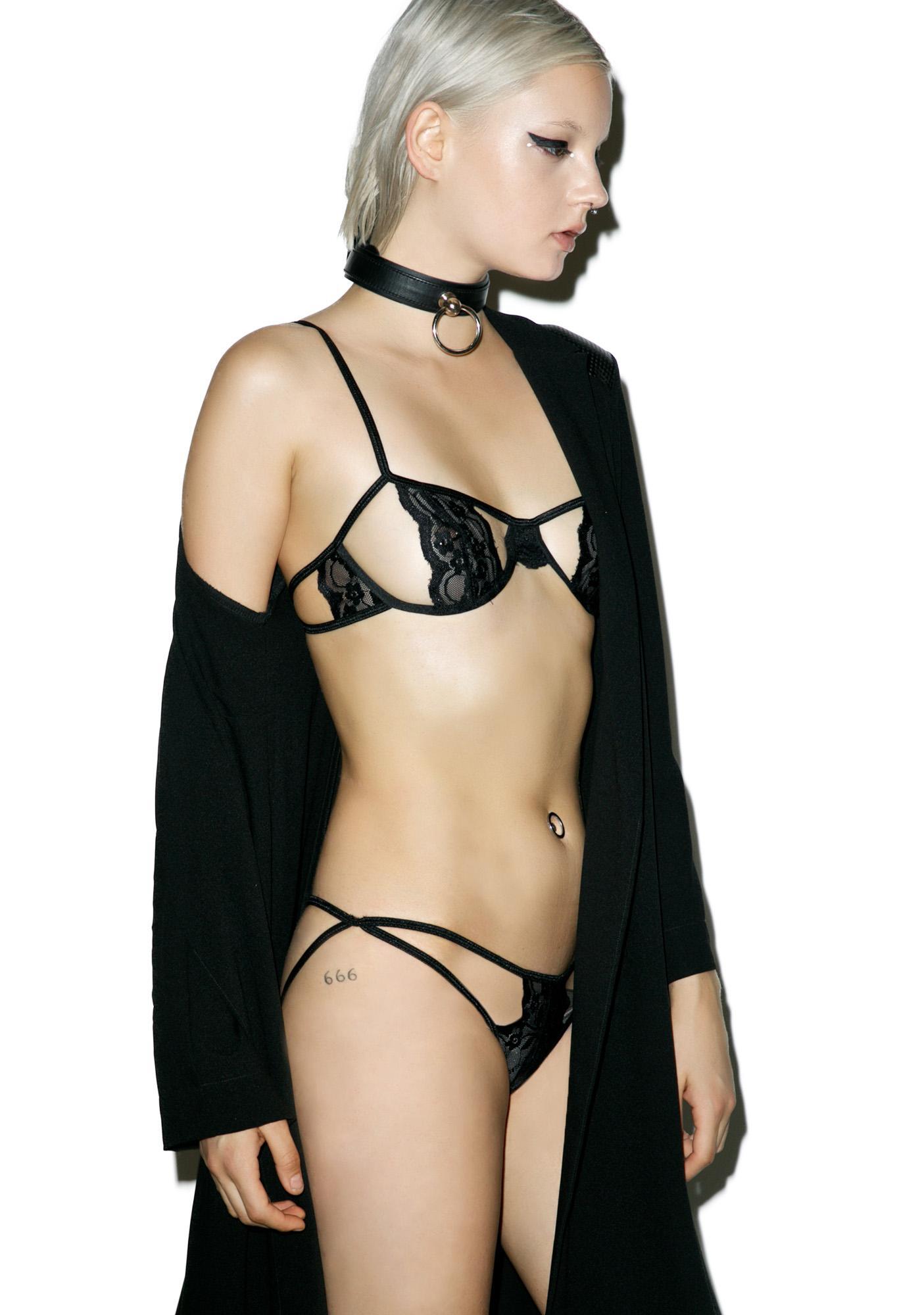 Raven Paneled Lace Bra Set
